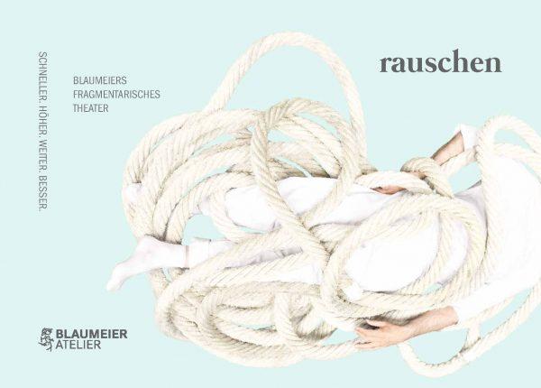 Blaumeier: DIE WEITERENTWICKLUNG: RAUSCHEN II