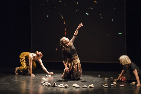 b.m-w dance company: HIDDEN LANGUAGE | Tanzperformance